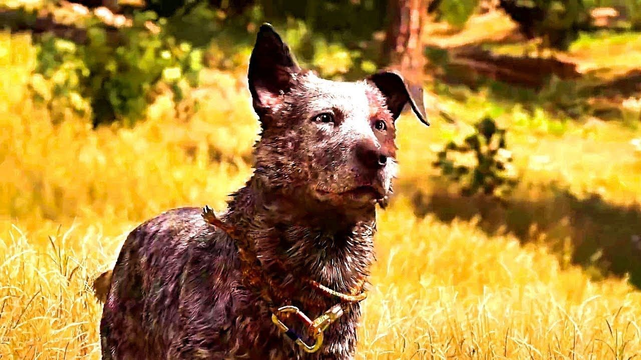 Far Cry 5 Boomer Character Spotlight Trailer Ps4 Pro Xbox One X Pc