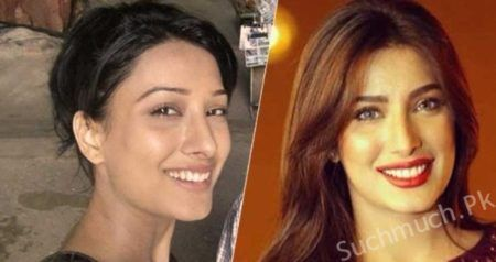 Pakistani Celebrities Before And After Plastic Surgery (With ...