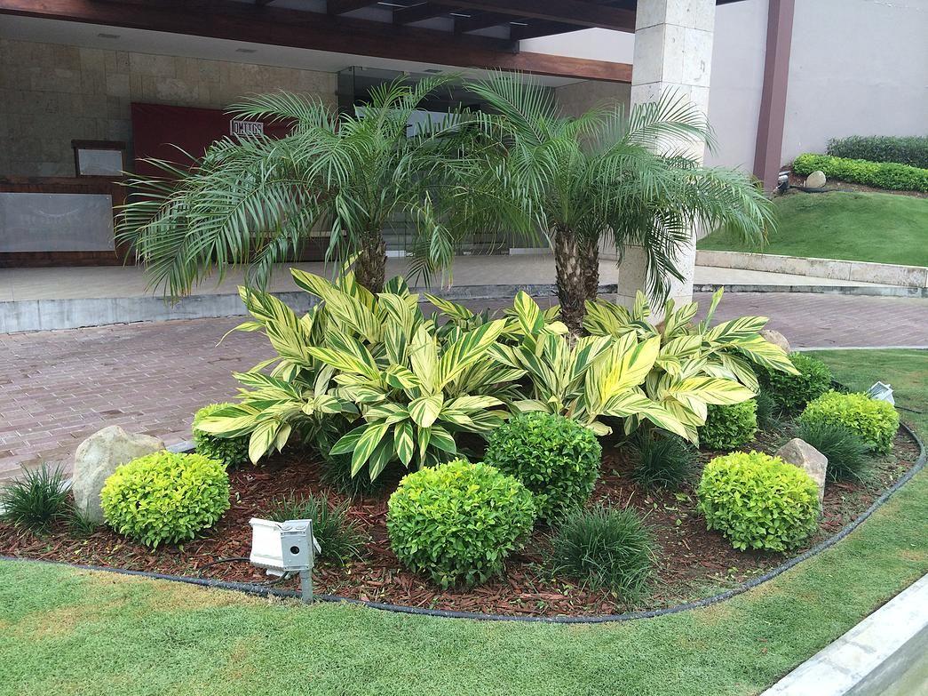 Lindo dise or de jard n con plantas duranta gold ginger for Jardines decorados con piedras y plantas