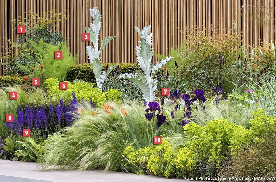 Réaliser un massif zéro arrosage | gardening / favorite plants and ...