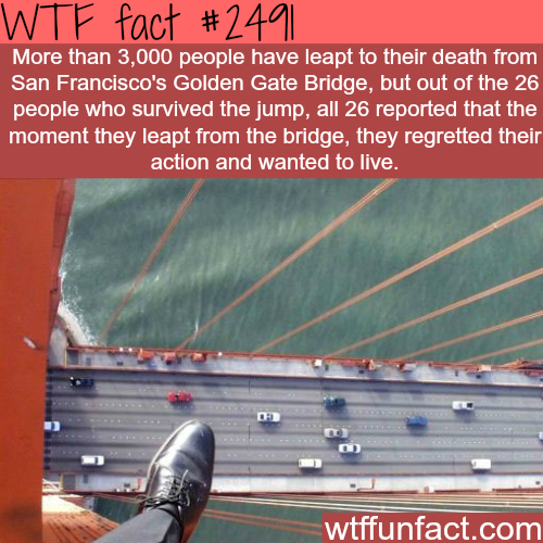 Suicide in the Golden Gate Bridge - WTF fun facts