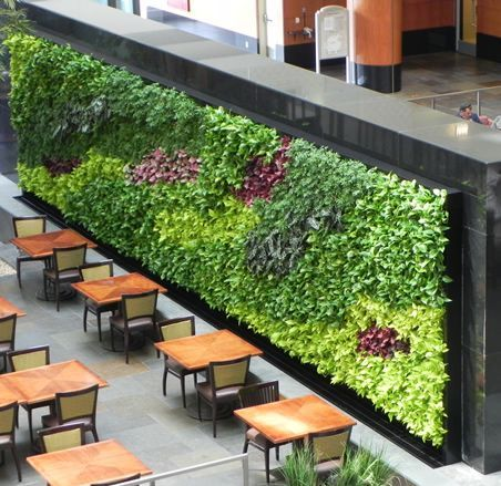 Green wall design vertical garden designs living wall for Interior garden design