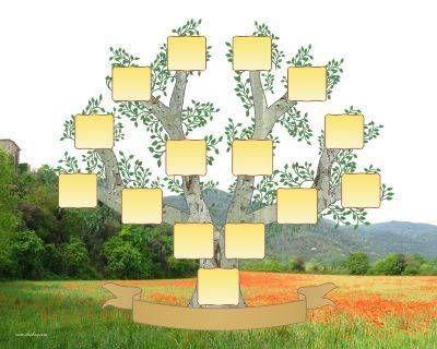 Arbol geneal gico para rellenar plantillas en blanco - Diseno arbol genealogico ...
