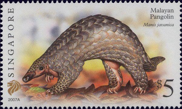 Spore Stamp Pangolin Ant Eater Endearing Endangered Rare Animal Stamp Singapore Malayan Merlion Stamp World Pangolin Stamp