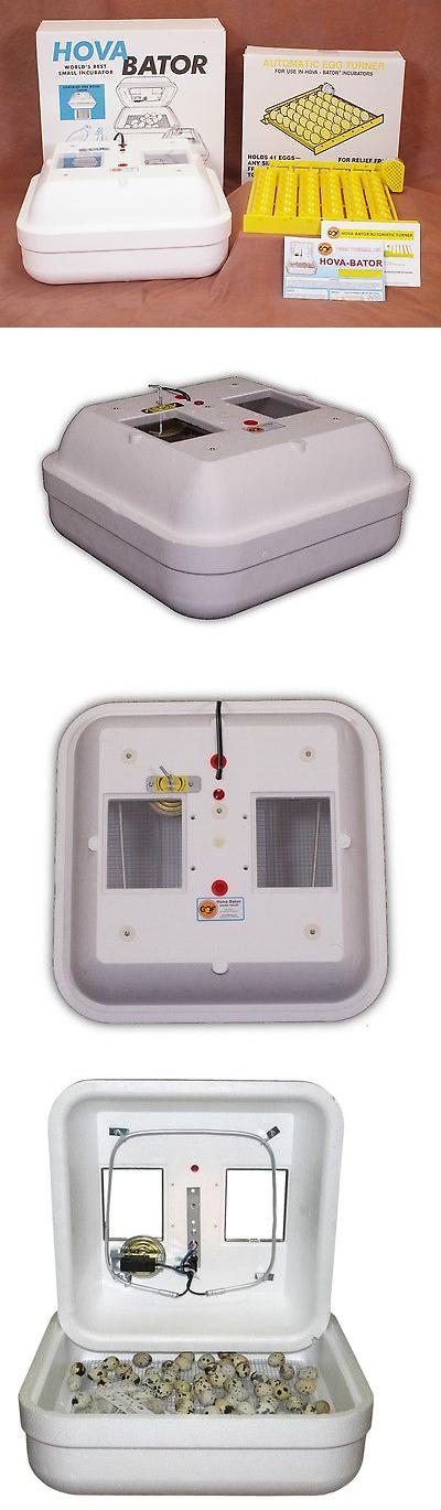 Incubators 46292 Hovabator Egg Incubator 1602n W 1611 Auto Egg