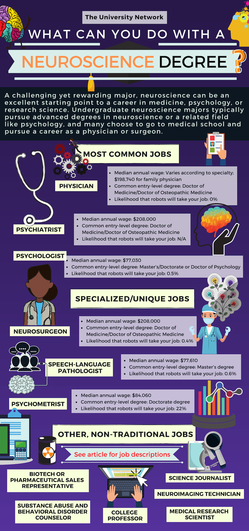 12 Jobs For Neuroscience Majors The University Network Neuroscience Medical Degree Neuropsychology