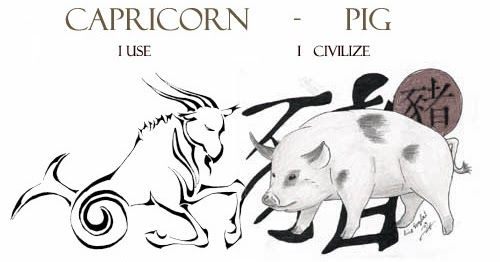 Capricorn pig