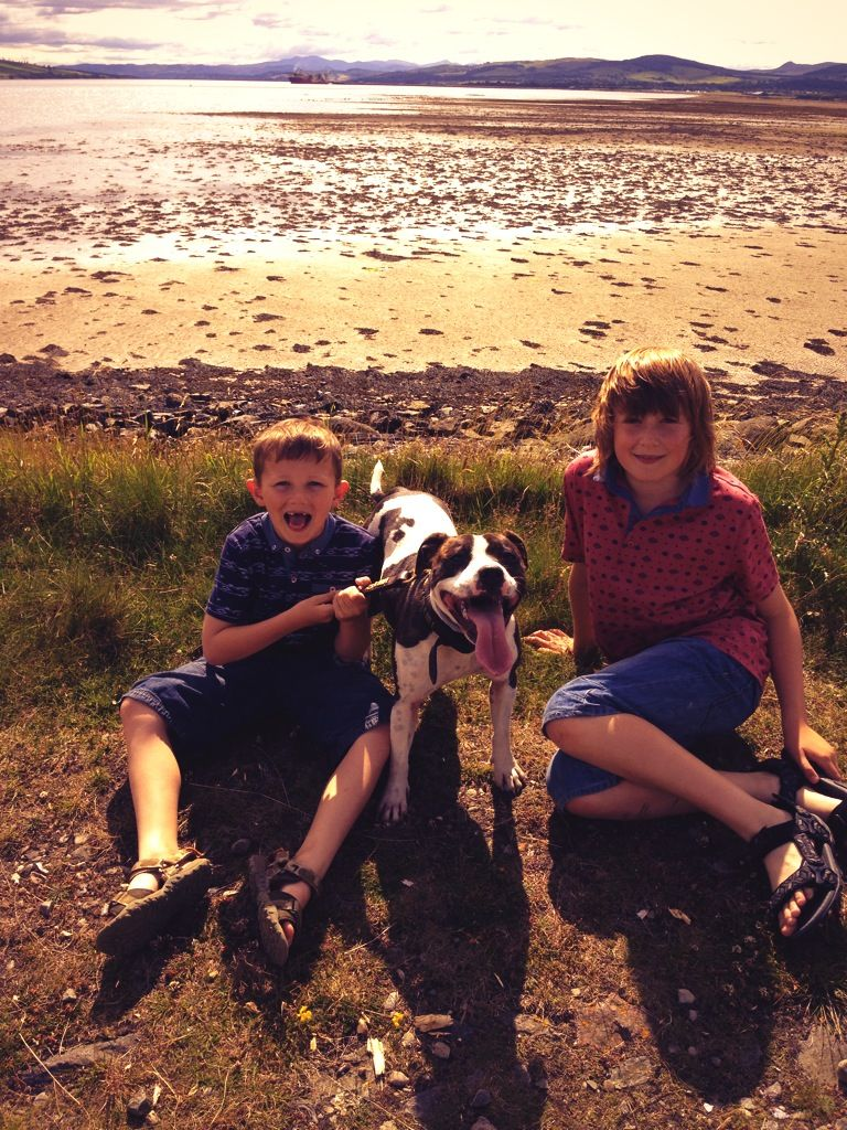 George, Tessakins and Toby, yankee pier, Alness