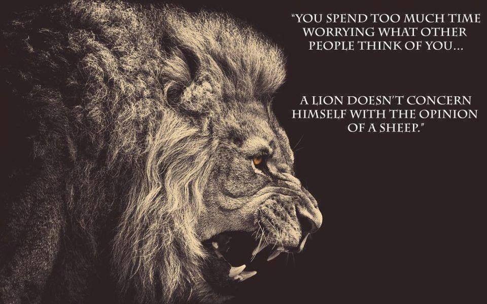 become a lion