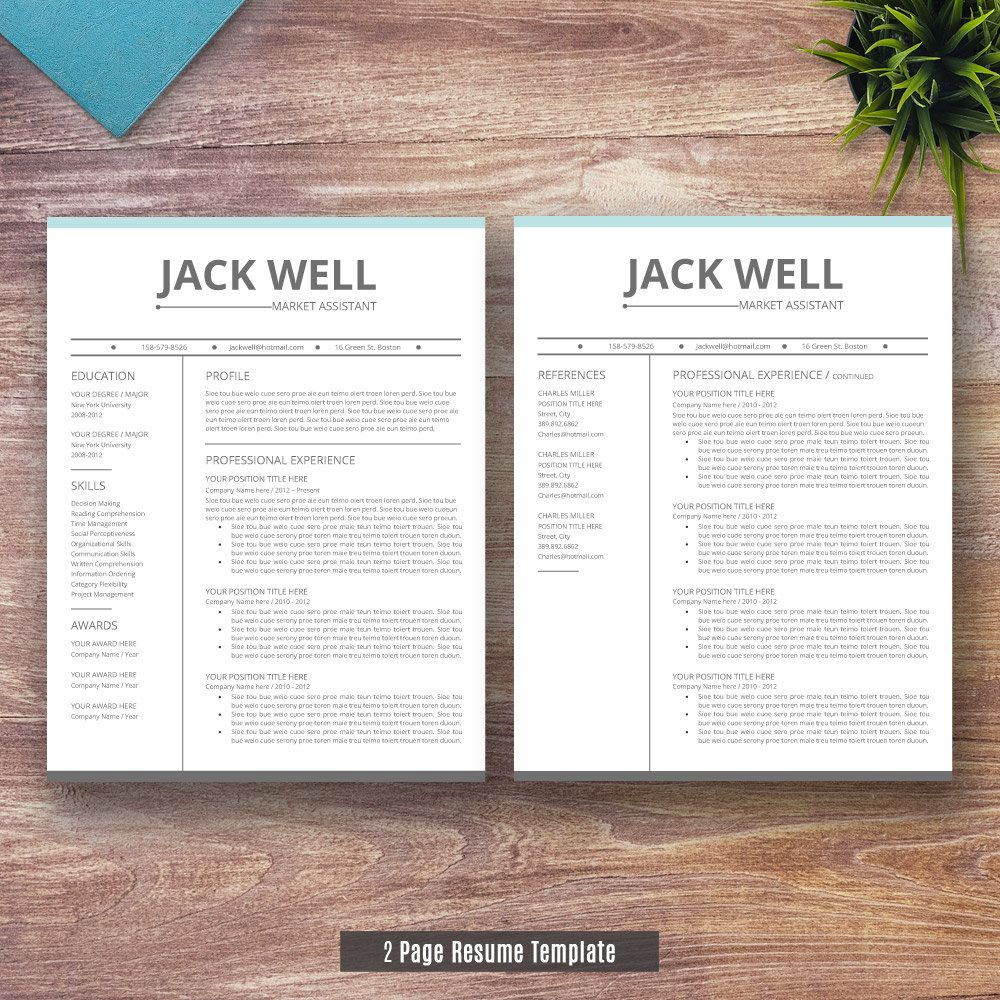 Professionalresume Template For Word  And  Page By Resumeexpert