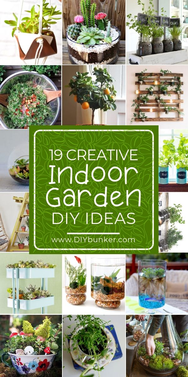 19 Indoor Gardening Ideas for Your Home