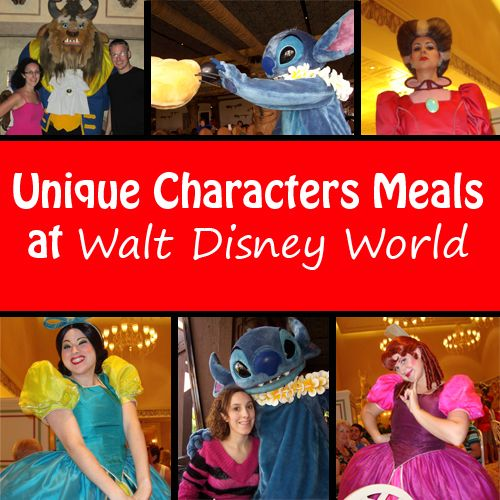 A listing of the unique character meals that occur at Walt Disney World. These meals feature uncommon characters, like Stitch, Sofia the First, and more.