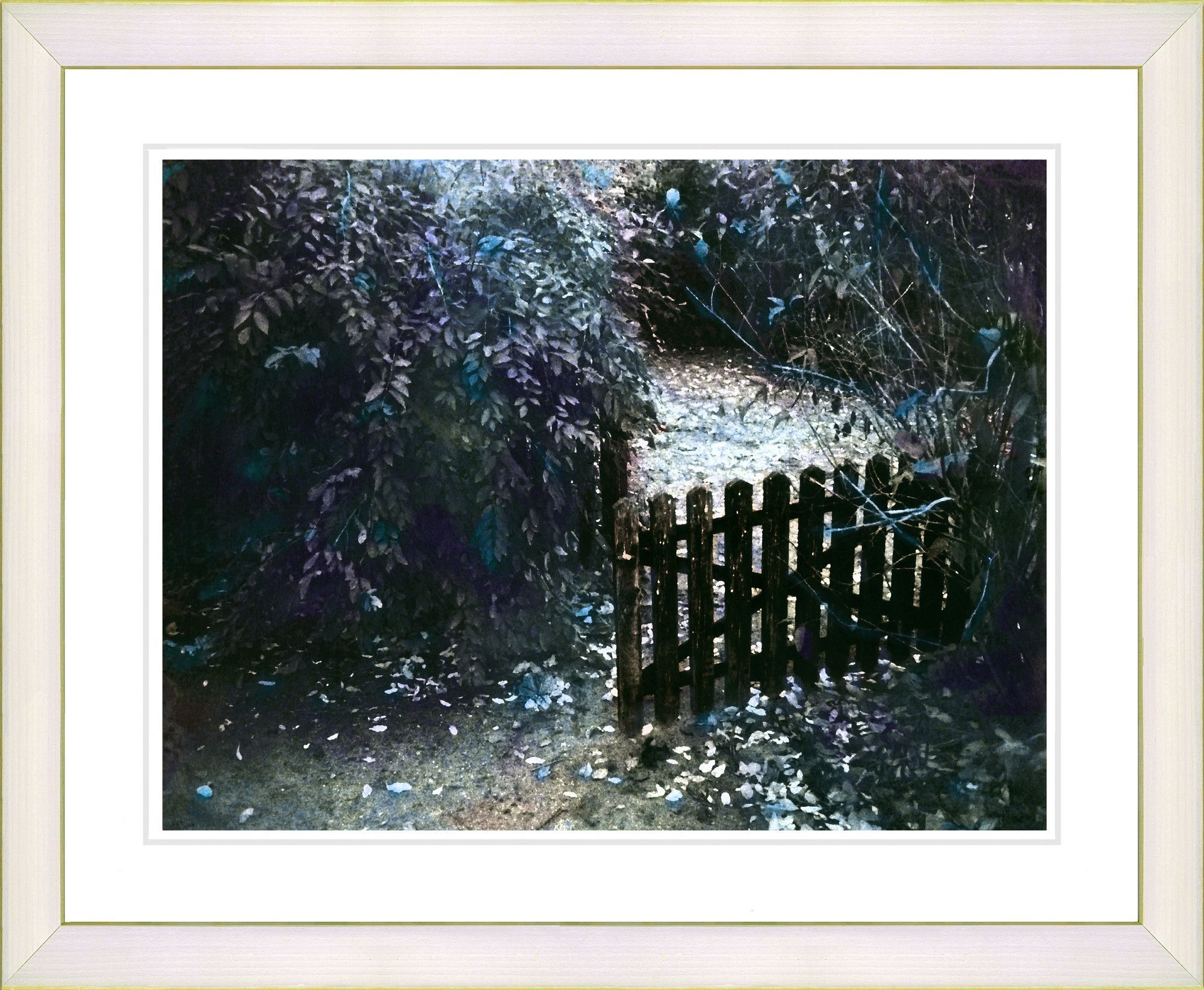 Cape Cod Garden - Dusk by Mia Singer Framed Fine Art Giclee Photographic Print