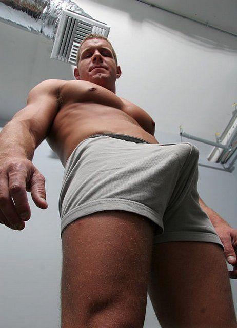 adam zacherl gay