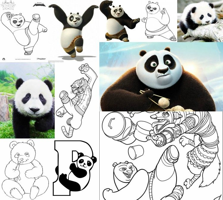 Printable kungfu panda coloring pages tigress master shifu