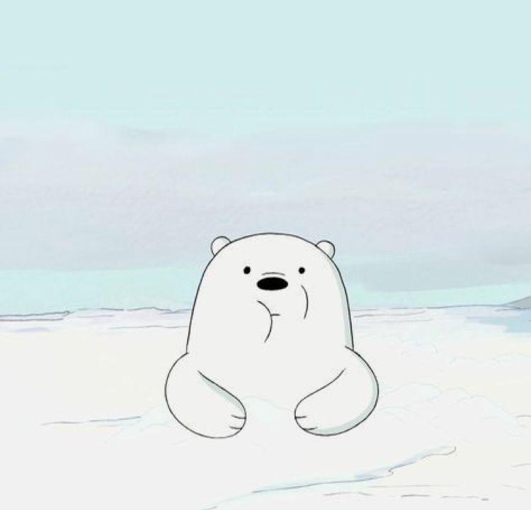 Pin By Nur Alya On We Bare Bears Ice Bear We Bare Bears