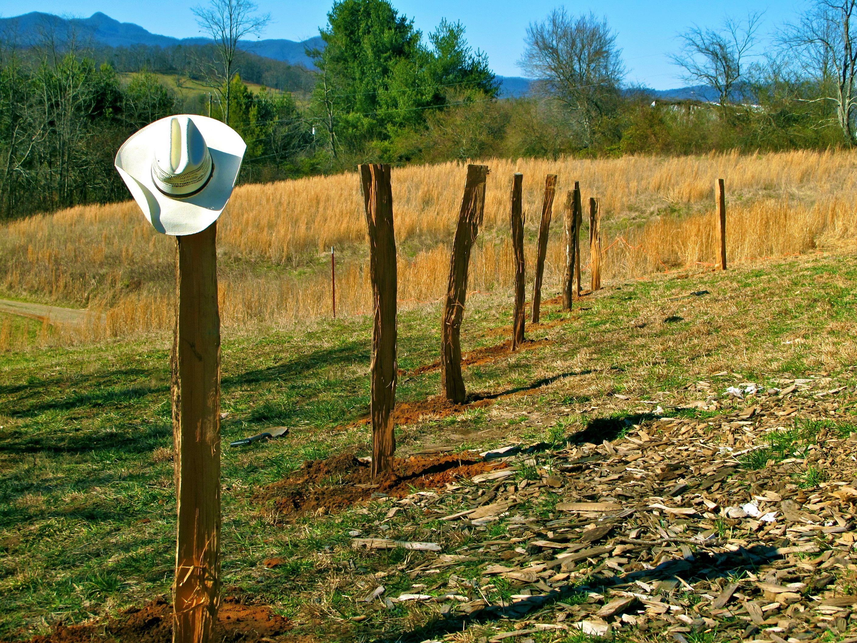 Pin on Farm- gardening