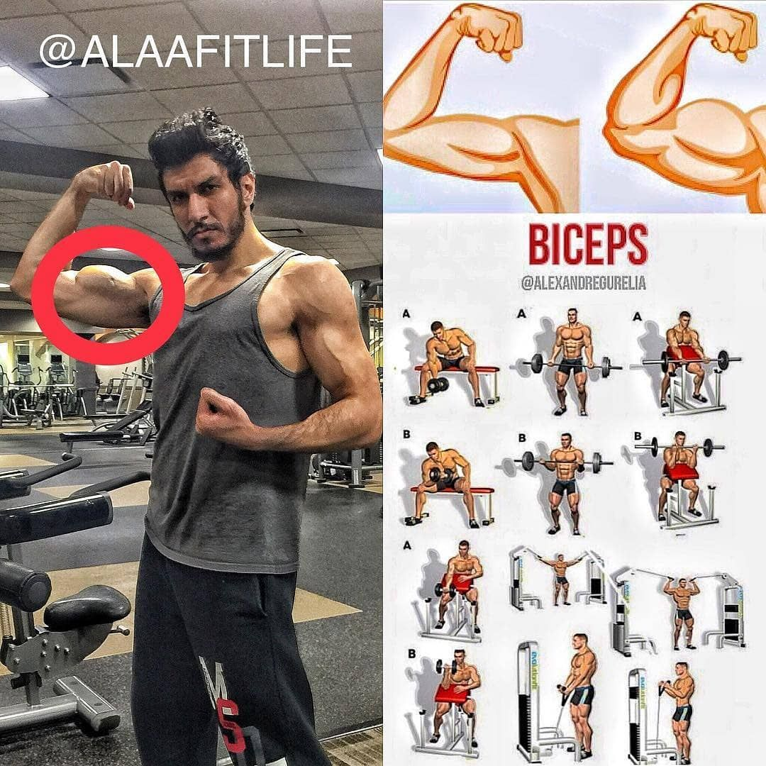 Biceps Exercises Biceps Workout Bodybuilding Workouts Workout