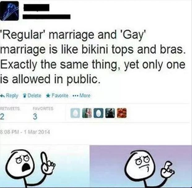 Gay Marriage And Regular Marriage Just Yes Funny Funny Pictures