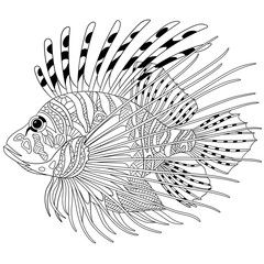 Zentangle Stylized Cartoon Zebrafish Lionfish Pterois Volitans Isolated On White Background Sketch For Lion Fish Lion Coloring Pages Animal Coloring Pages
