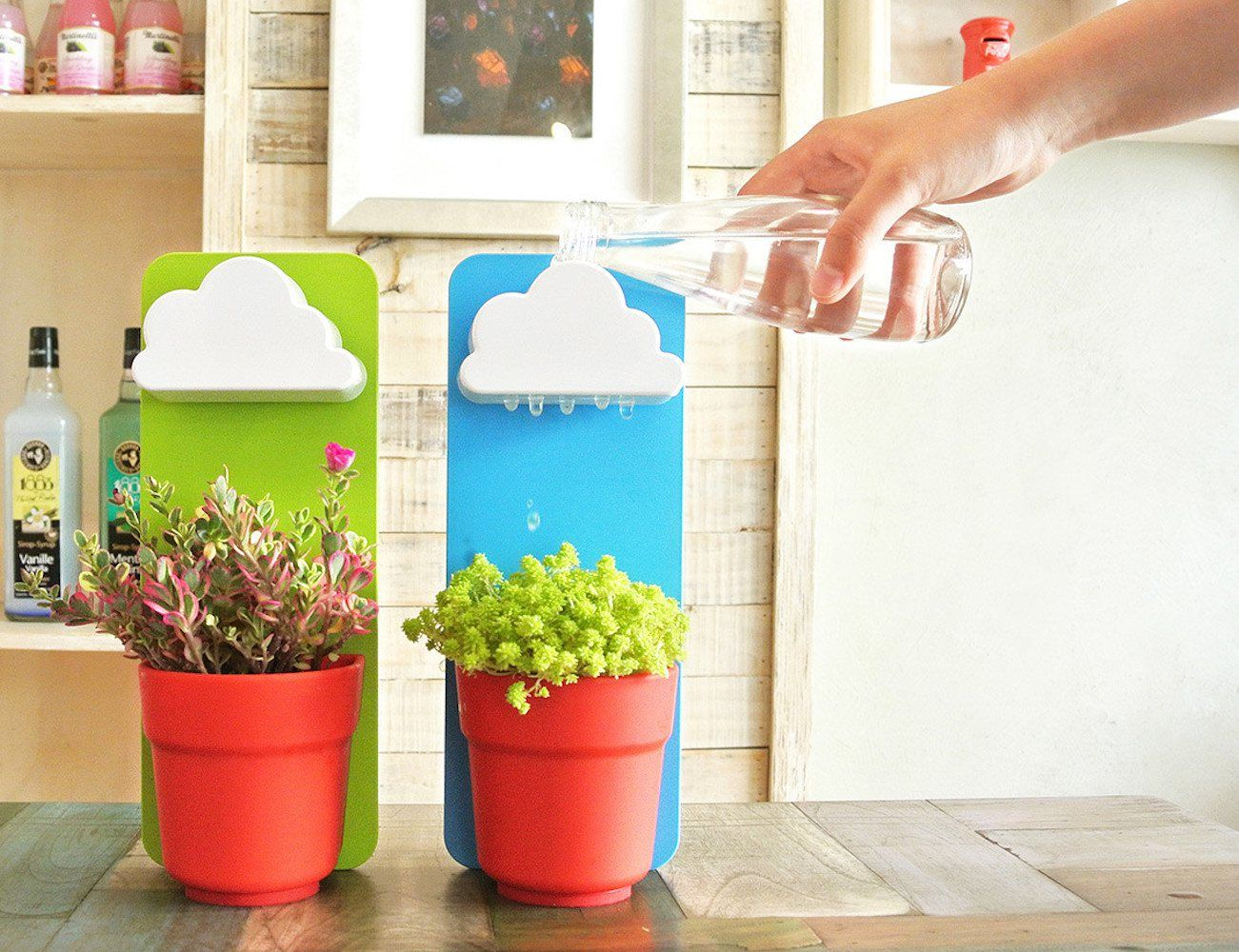 Rainy pot wall plant pot with cloud shaped watering basin indoor your beautiful indoor gardening wall plant pots have undergone a fantastic makeover by jeong seungbin at workwithnaturefo