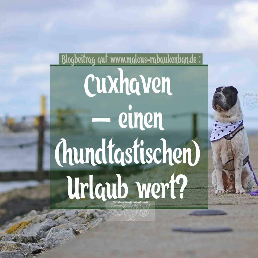 Singlereisen cuxhaven