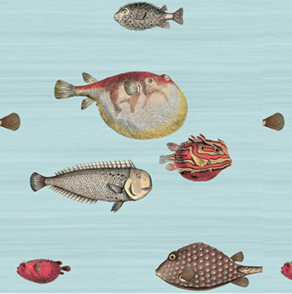 Cole And Son Acquario Wallpaper Pale Blue And Multi Cole And Etsy Cole And Son Wallpaper Cole And Son Fish Wallpaper