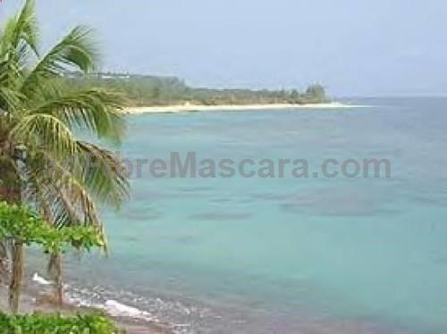 Western puerto rico beach villas isabela isabela offering free wifi western puerto rico beach villas isabela isabela offering free wifi and a garden western publicscrutiny Image collections