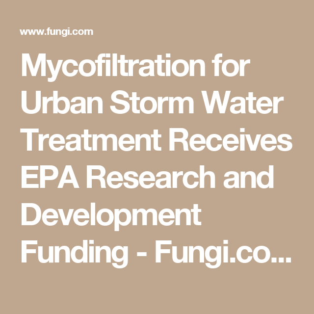 Mycofiltration for urban storm water treatment receives epa research mycofiltration for urban storm water treatment receives epa research and development funding fungi publicscrutiny Gallery