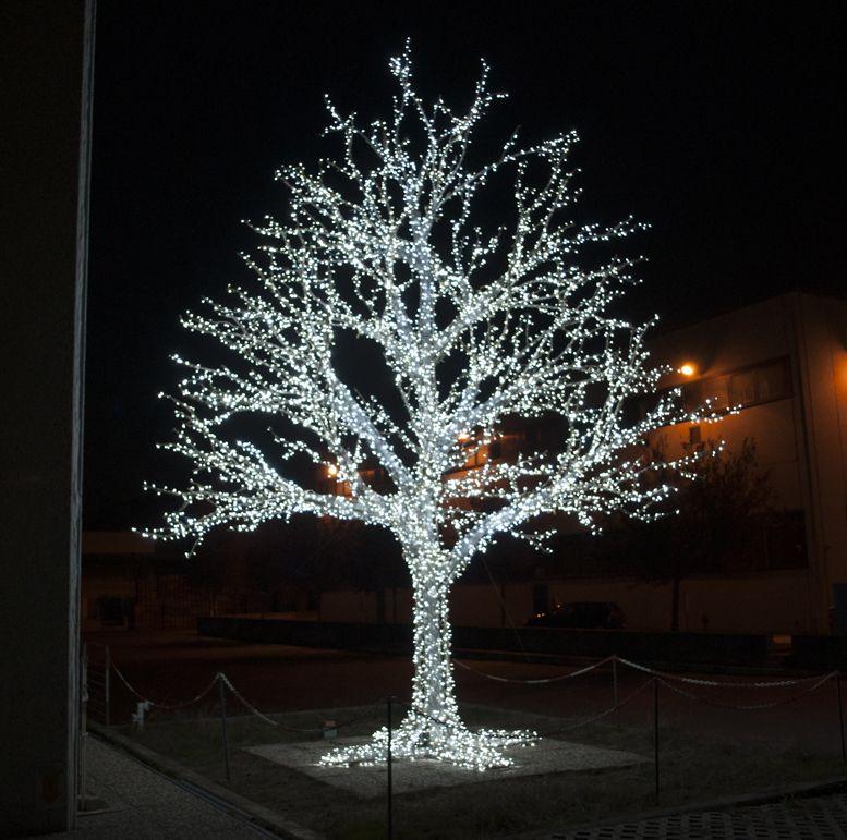 All addobbi natalizi alberi di natale corone ghirlande - Alberi da interno ...