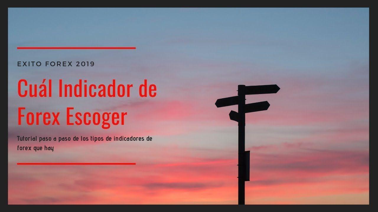 Exito Forex 2019 Como Escoger El Indicador De Forex Adecuado