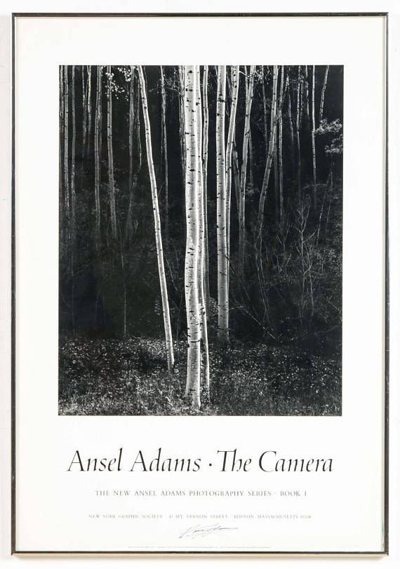 Signed Framed Ansel Adams Poster Landscape Photography Ansel Adams Black And White Landscape Black And White Posters