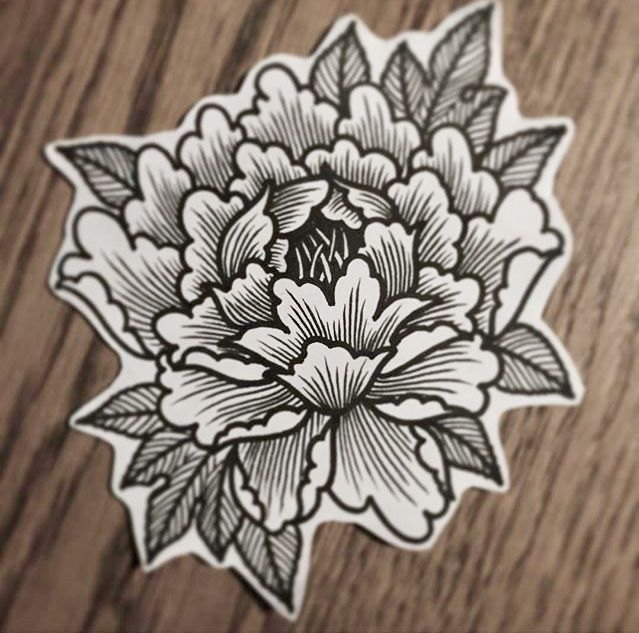 Pin By Kat On Tattoos Tattoos Flower Tattoos Tattoo Drawings