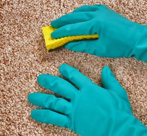15 Home Remedies to Remove Mildew from Carpet-Q #mildew # ...