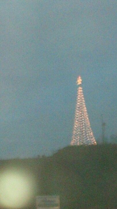 Christmas Tree Hill Richlands Va Virginia Is For Lovers Favorite Places Christmas Tree Hill
