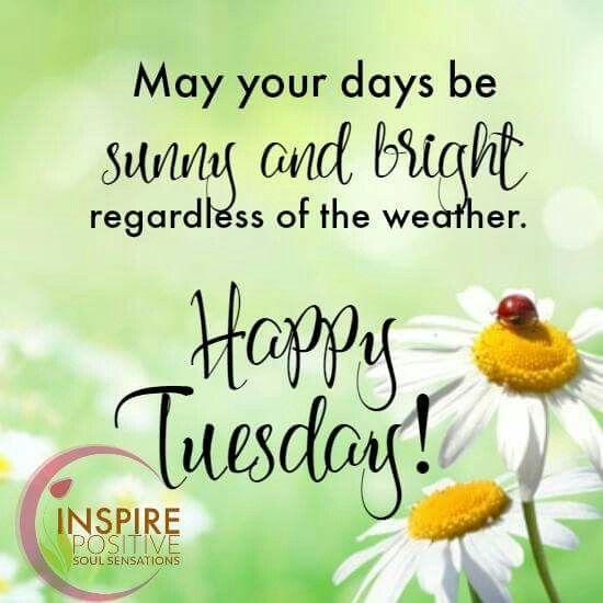 Happy Tuesday … | Happy tuesday morning, Happy tuesday quotes, Tuesday  quotes good morning