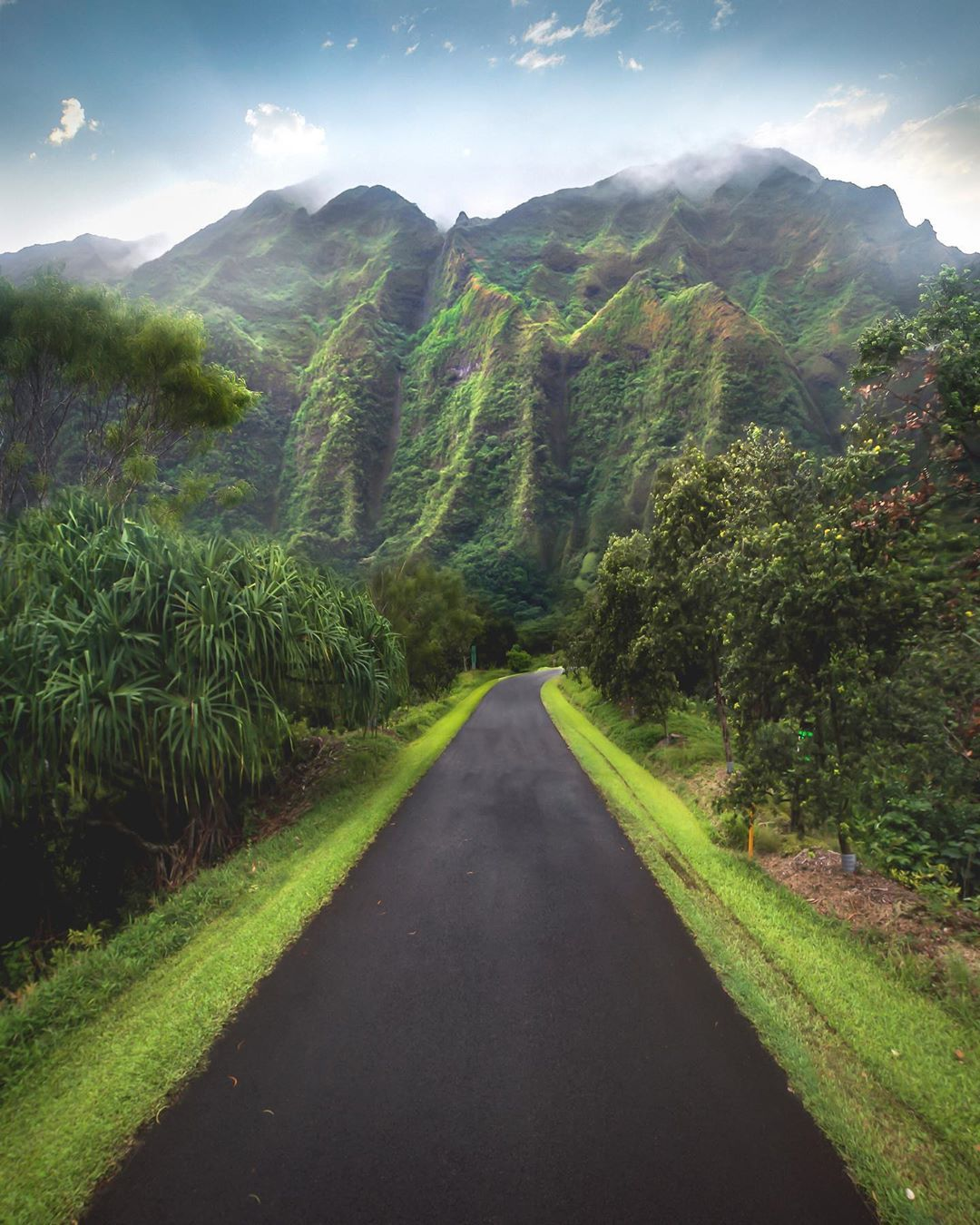 Nature at Hawaii, Oahu in 2020 Adventure tours