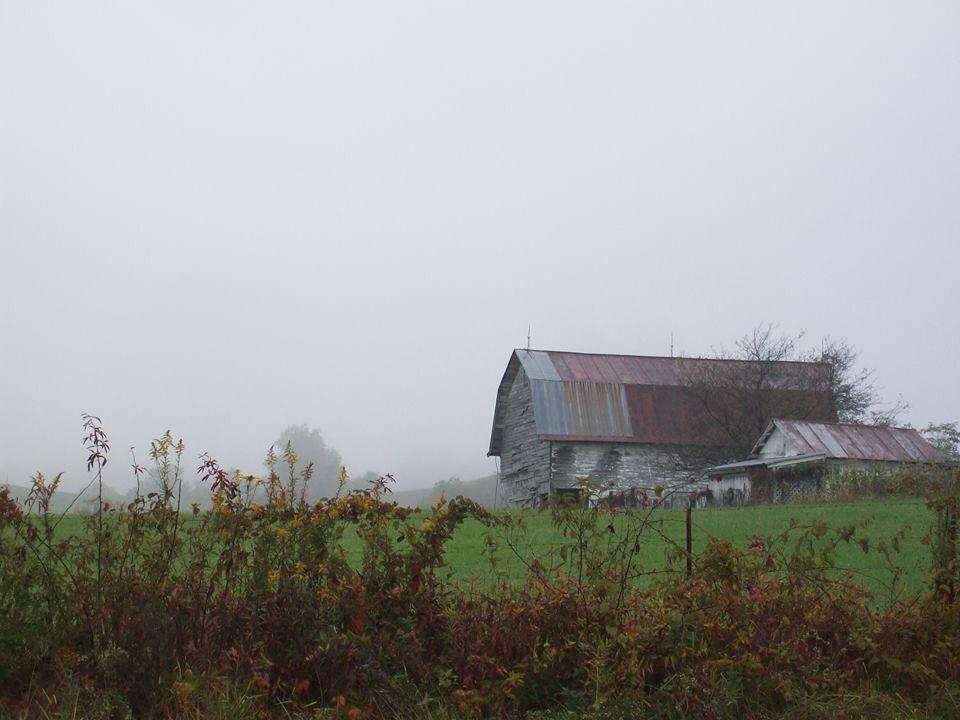 Upshur County-Kim Stewart-10/10/14--AOUWV