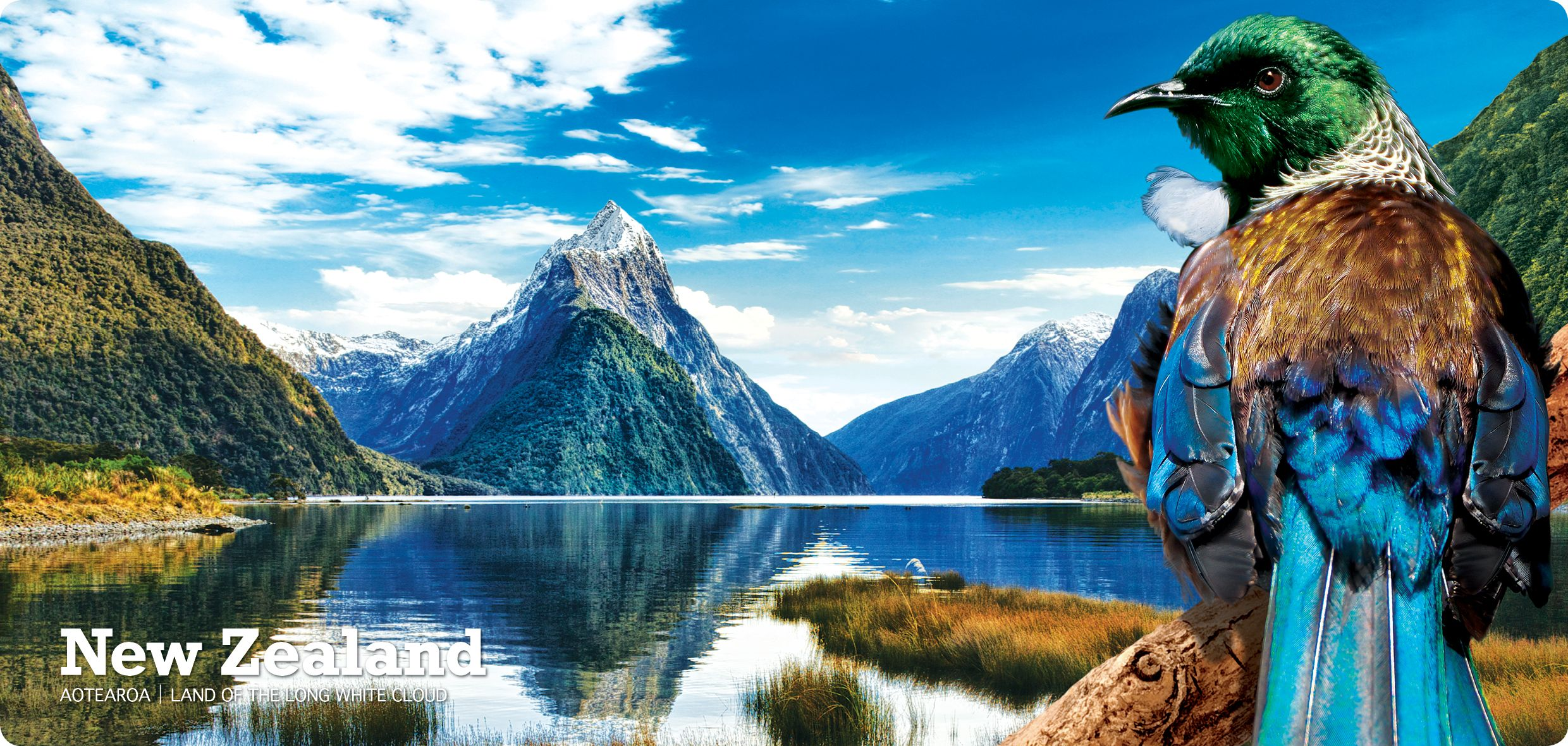 Tui Milford Sound - The best postcard in the country ;))