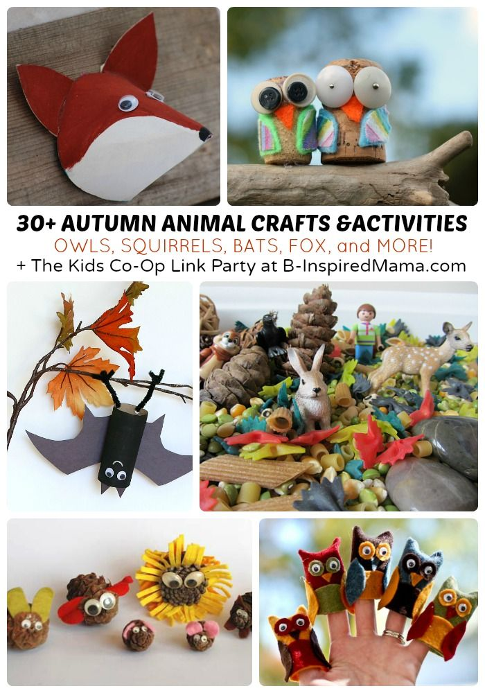 30 Autumn Animal Activities The Weekly Kids Co Op Kids