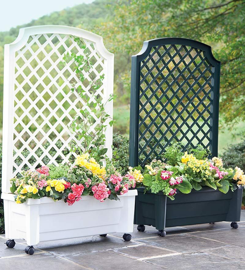 What could be better than a planter and trellis in one for Privacy wall planter