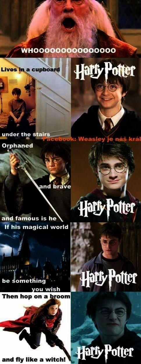 Pin By Oliii On Harry Potter Harry Potter Cast Harry Potter Spells Harry Potter Puns