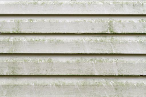How To Remove Mold From Vinyl Siding In 2019 Cleaning