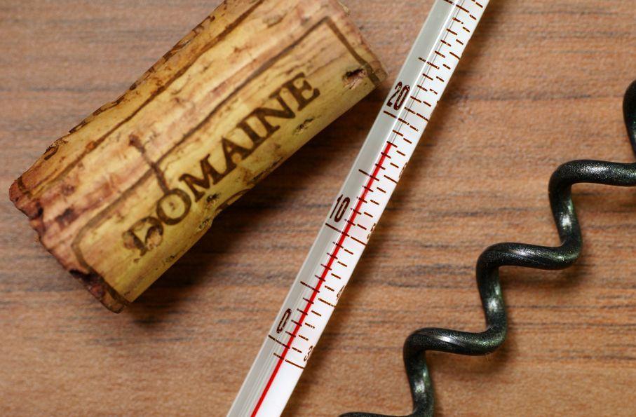 Rotwein muss immer bei Zimmertemperatur getrunken und gelagert werden! Das ist ein weit verbreiterter Mythos! #Rotwein #Kühlschrank