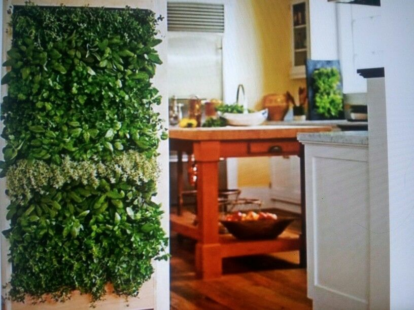 Indoor gardening inspiration