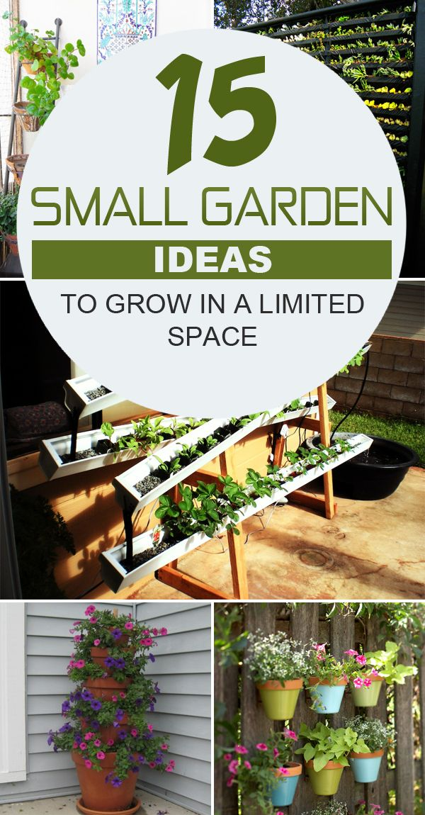 Small Garden Ideas Diy
