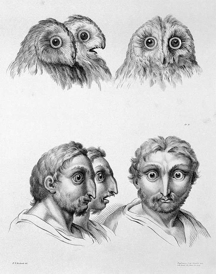 ¿Te has preguntado cómo luciríamos de no haber evolucionado a partir del mono? Un reconocido artista del siglo XVII sí. De hecho, su obra está circulando en las redes debido a su original propuesta. Por Abraham Monterrosas Vigueras.