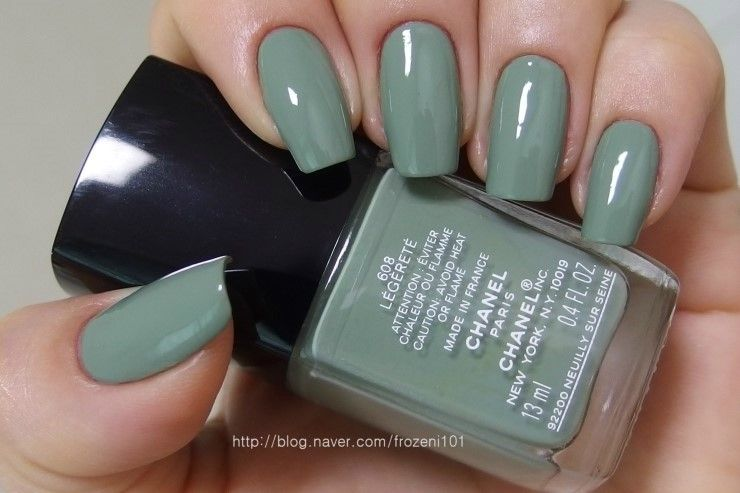 Chanel Le Vernis 608 Legerete Dior Nail Polish Nails