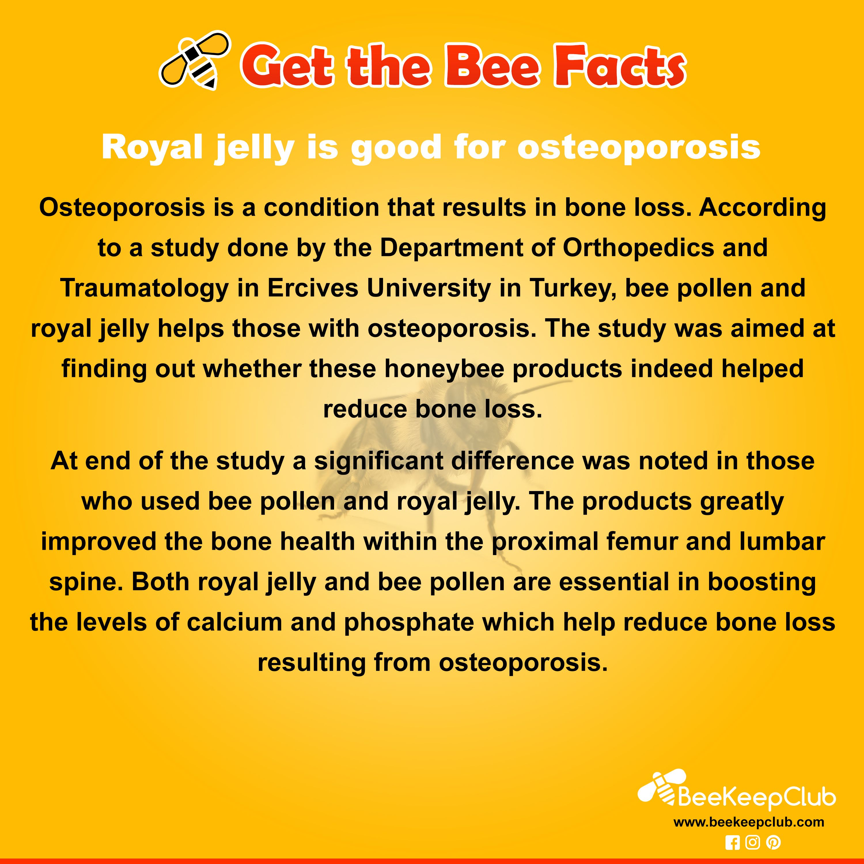 Get The Bee Facts Royal Jelly Is Good For Osteoporosis Get The