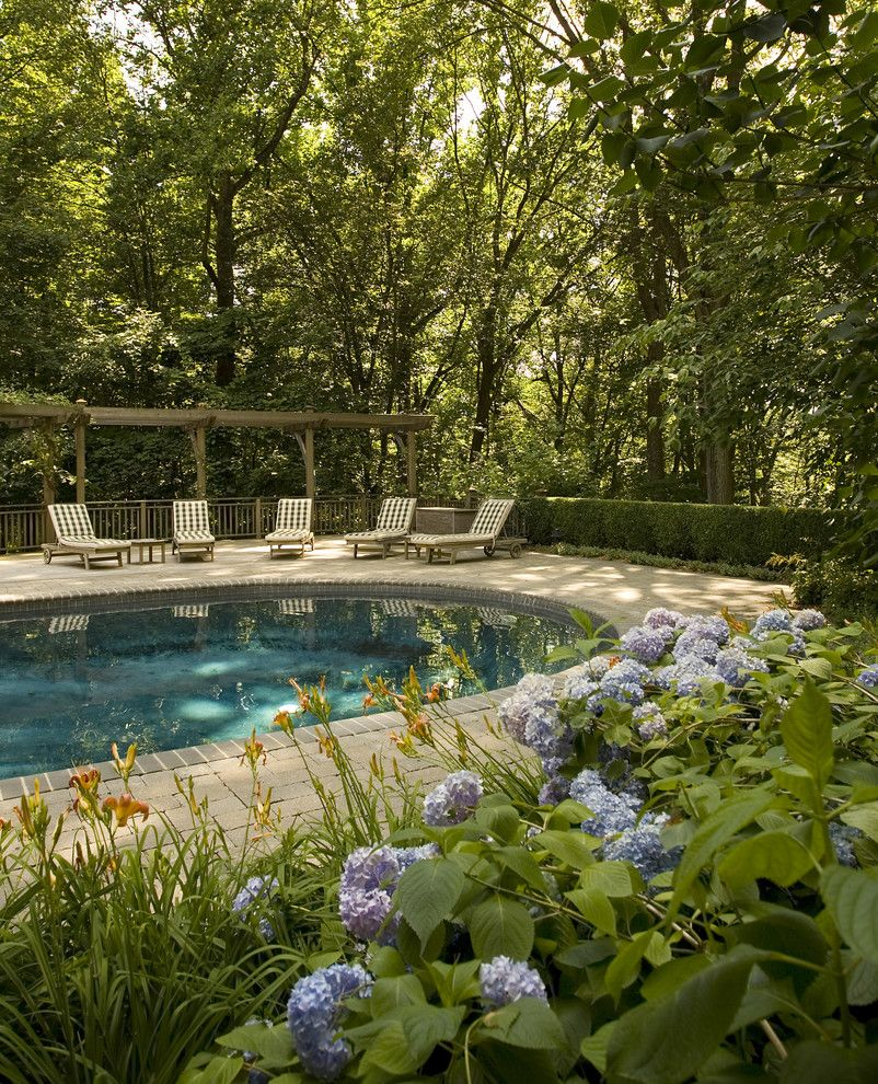 Traditional Garden With Pool: Landscape Around Zone 9 Pool